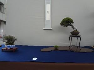 (公財)大阪観光局賞(床飾り)