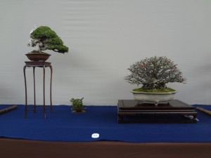 産経新聞社賞