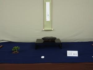 (一社)日本水石協会賞