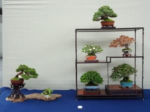 (公財)国際花と緑の博覧会記念協会賞